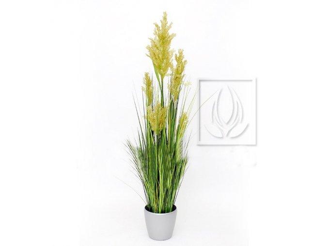 Umělá rostlina Tráva pampová (145cm)