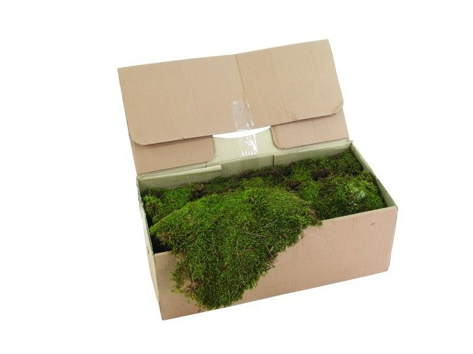 Umělá rostlina Mech dekorační (2 kg)