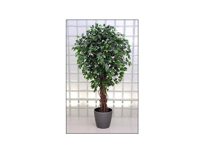 Umělý strom Fikus Fat (180cm)