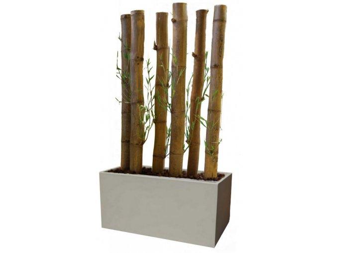 Umělý strom Bambusová stěna