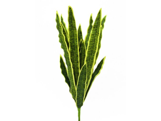 Umělá rostlina Sansevieria (50cm)
