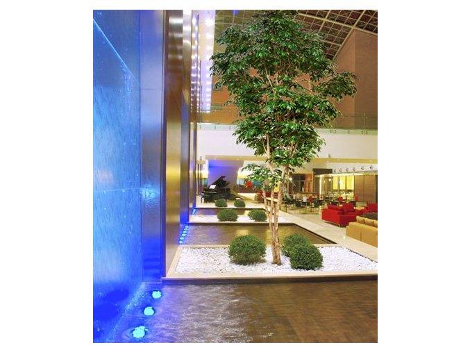 Umělý strom Fikus Exotica Gigantea (Varianta 220cm)