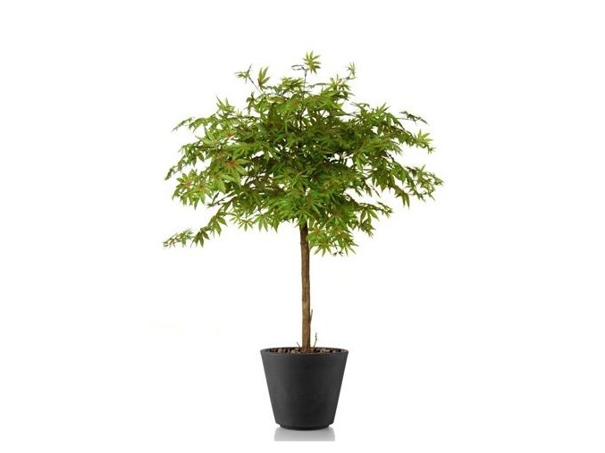 Umělý strom Maple Topiary (120cm) multicolor  javor