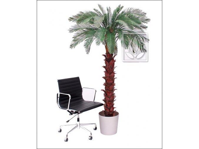 Umělá palma Cycas (Varianta 210cm)