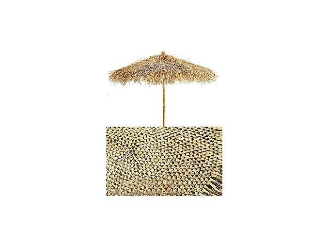 Panel z palmových listů - kulatý (300cm)