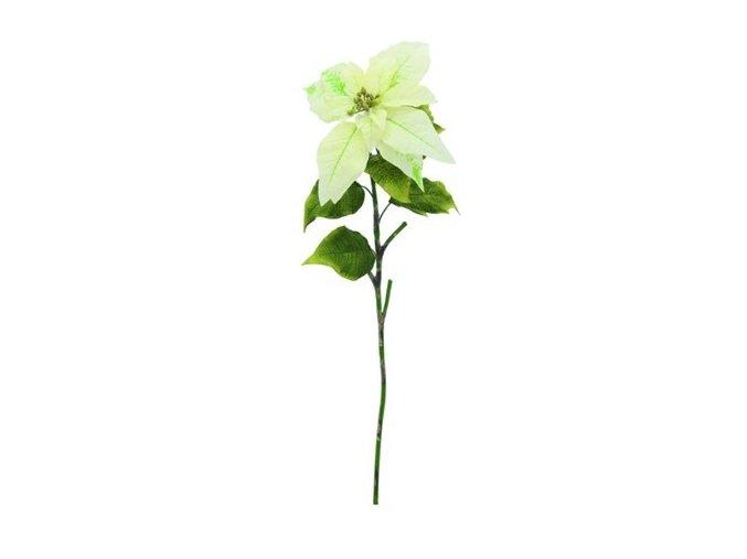 Umělá květina Poinsetia (70cm) krémová
