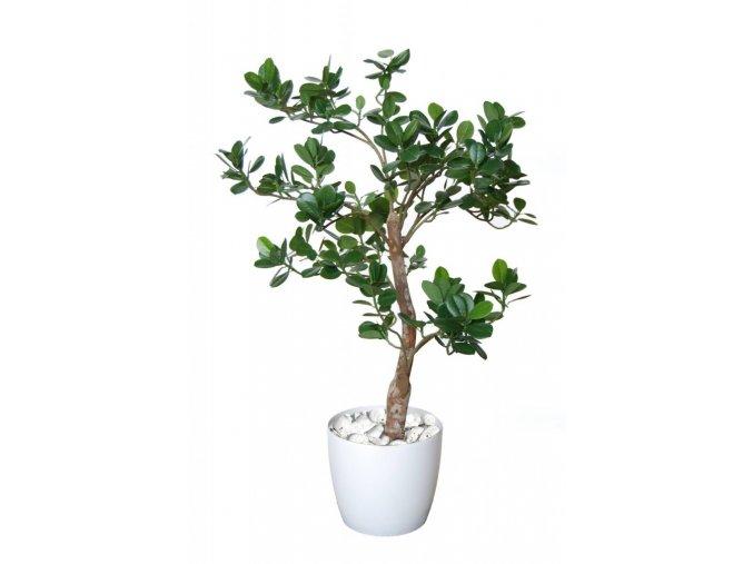 Umělý strom Fikus Panda Elfie (90cm)