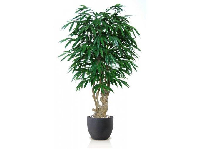 Umělý strom Longifolia Malabar (Varianta 150cm)