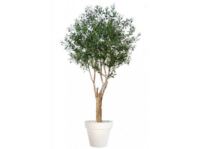 Umělý strom Olive Riviera (Varianta 200cm)