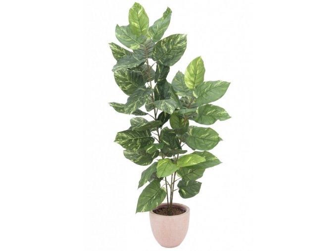 Umělá rostlina Pothos (150cm)