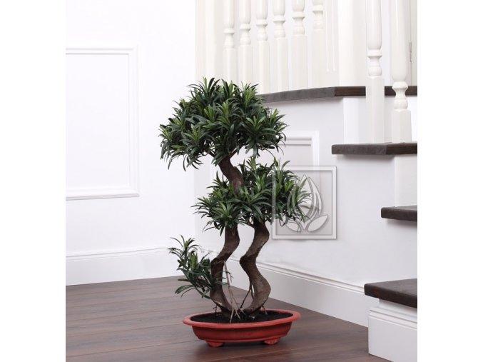 Umělá bonsai Podocarpus (65cm)