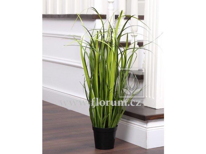 Umělá rostlina Tráva rákosová (65cm)