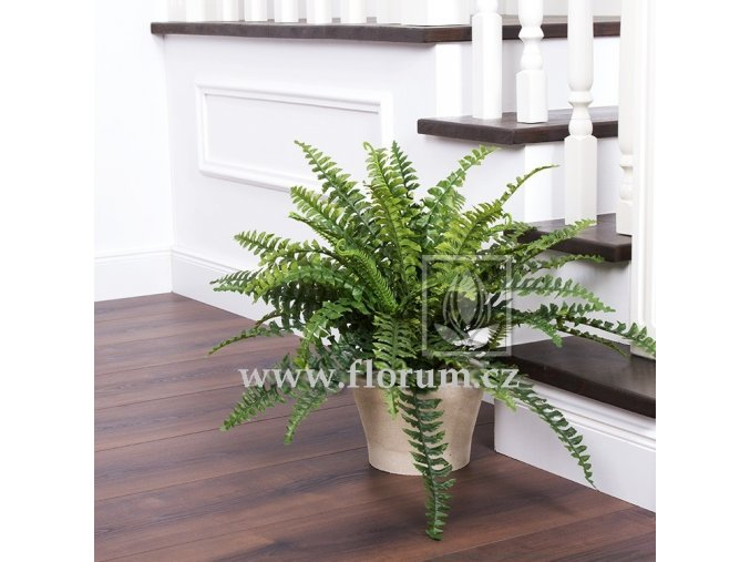 Umělá rostlina Kapradí Boston (60cm)