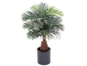Umělá palma Phoenix Mini (105cm)