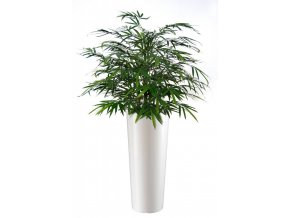 Umělý strom Bambus Japanese Bush (80cm) zelený