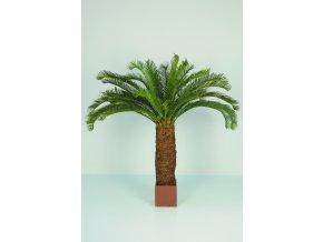 Cycas Palm w pot 160 cm Green 5405GRN
