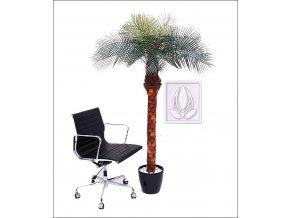 Umělá palma Phoenix Lux (170cm)