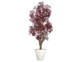 Umělý strom Aralia Malabar (170cm) burgundy