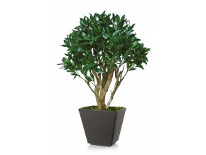 Umělý strom Laurel Robustina (90cm)  vavřín