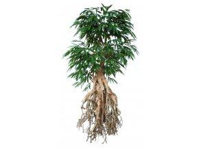 Umělý strom Longifolia Root Giant (250cm)