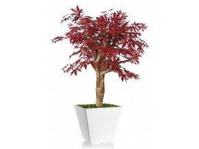 Umělý strom Maple Robustina (90cm) burgundy  javor