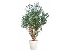 Umělý strom Olive Robusta (160cm)
