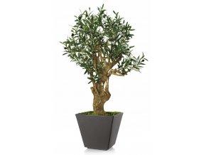 Umělý strom Olive Robustina (90cm)  olivovník