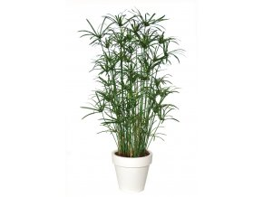 Umělá rostlina Papyrus Royal Lux (170cm)