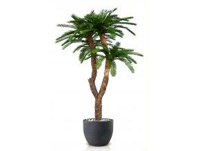 Umělá palma Cycas Baby Drago (250cm)