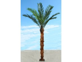 Phoenix Palm 400 cm Green 1065003
