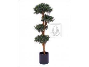 Umělý strom Podocarpus (150cm)