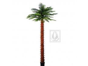 Umělá palma Olejná (400cm)