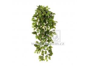 Umělá rostlina Pothos (80cm)
