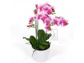 Umělá rostlina Orchidej (60cm) růžová