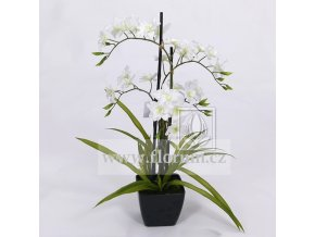 Umělá rostlina Orchidej (70cm) bílá