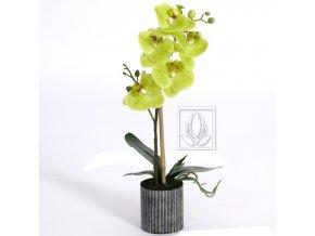 Umělá rostlina Orchidej (45cm) limetka
