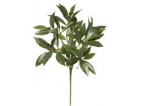 Umělá rostlina Sweet Bay, 45cm