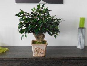 Umělá bonsai Ficus Retusa (60cm)