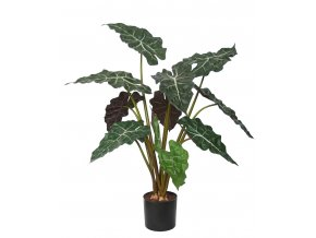 Alocasia Plant w pot 70 cm Green Red 5514GRD