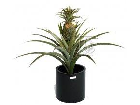Umělá rostlina Ananasovník (75cm)