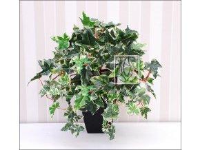 Umělá rostlina Břečťan holandský (45cm)
