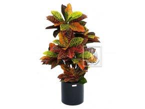 Umělá rostlina Croton (90cm)