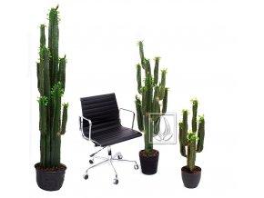 Umělá rostlina Euphorbia (varianta Umělý strom Euphorbia (190cm))