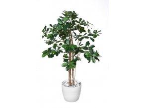 buxifolia elfie 100 cm green 1056004