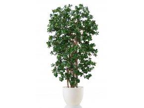 30338 ficus panda boschetto 220 cm green 1051015