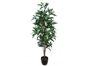 Mango Tree 170 cm Green V1069013