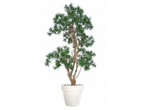 11907 podocarpus stylish 170 cm green classic 1060014
