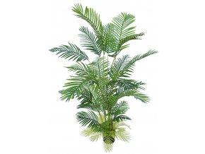 Areca Palm w pot 180 cm Green 5568GRN