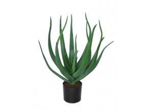 Aloe Vera w pot 60 cm Green 5429GRN (1)