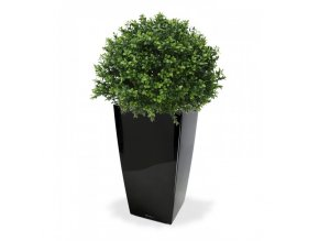 Boxwood Ball 40cm